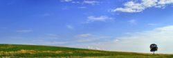 Die Coronakrise als Chance für mehr Nachhaltigkeit